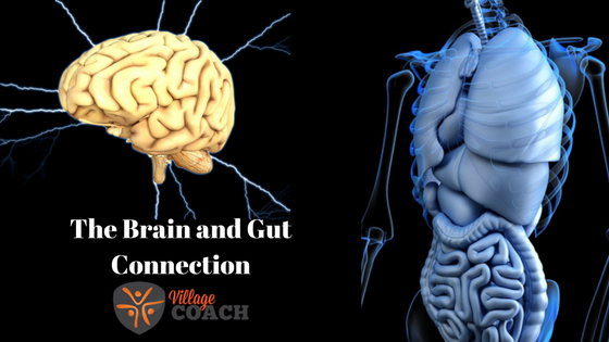 The-Gut-and-Brain-Connection-BLOG